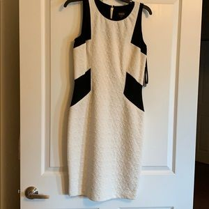 Laundry by Shelli Segal black and cream dress NWT